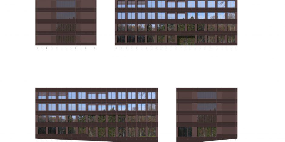 SUIS - Fassadenstudie